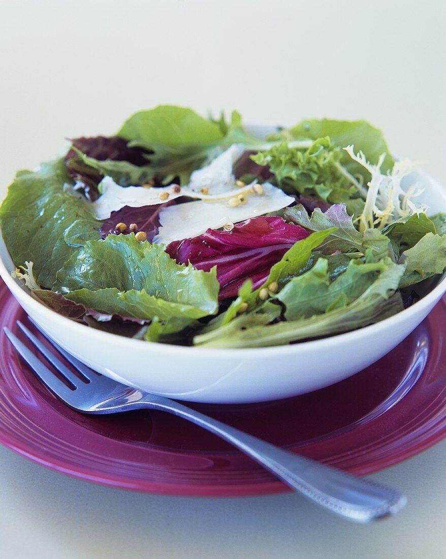 Salad leaves with coriander vinaigrette