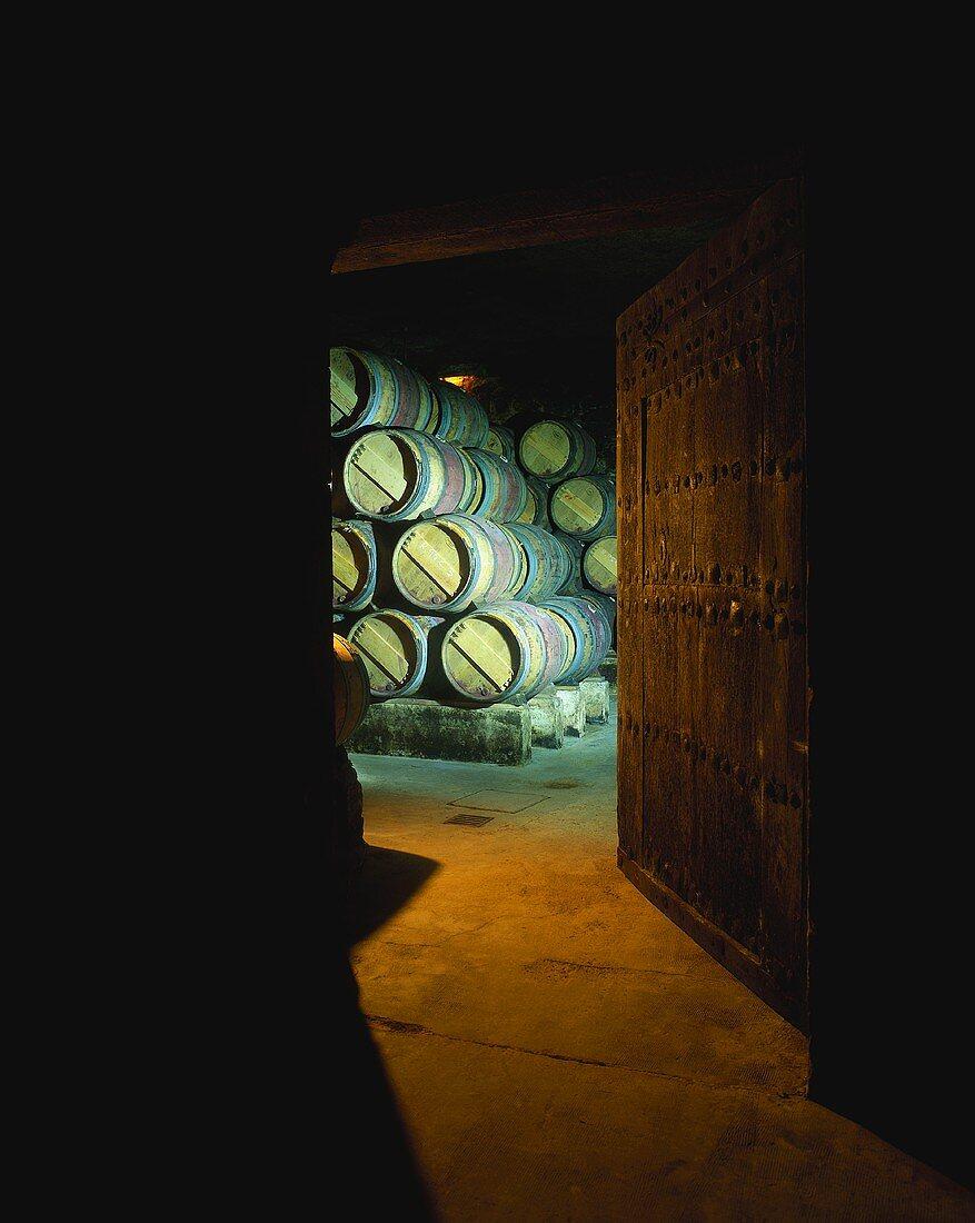 Old wine cellar with wooden barrique barrels