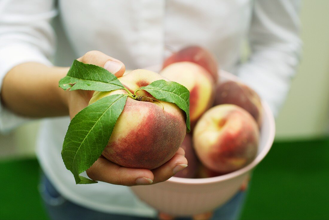 Hand holding a peach with leaves