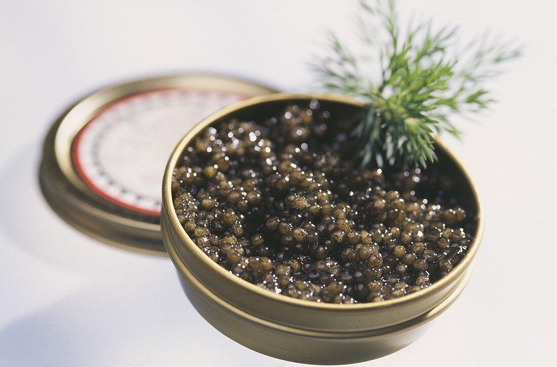 Osetra caviar 'Asetra Hell' in the tin