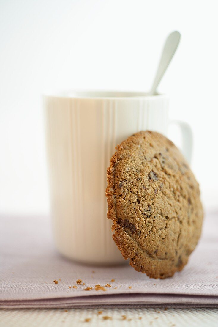 Cinnamon biscuit in front of a cup of hot chocolate
