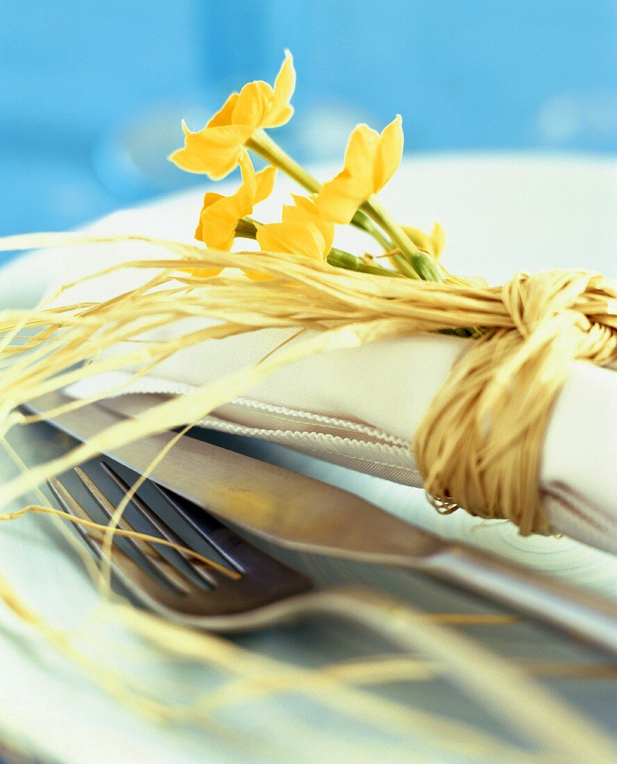 Place-setting decorated with narcissi
