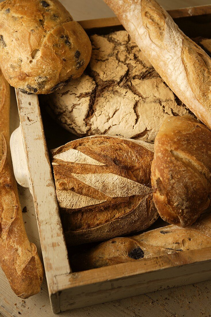 Various types of bread in a drawer