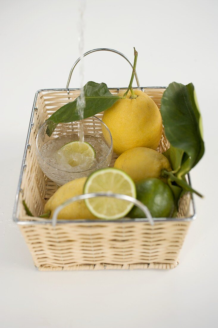 A glass of mineral water in a basket with lemons and limes