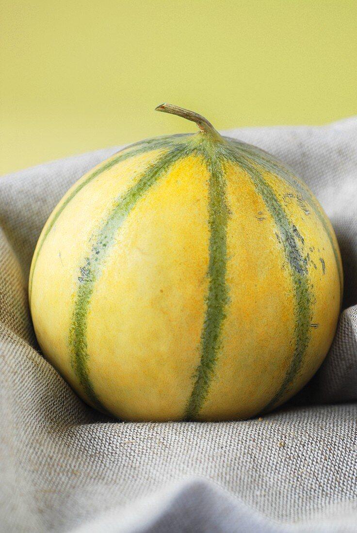 Charentais melon on cloth