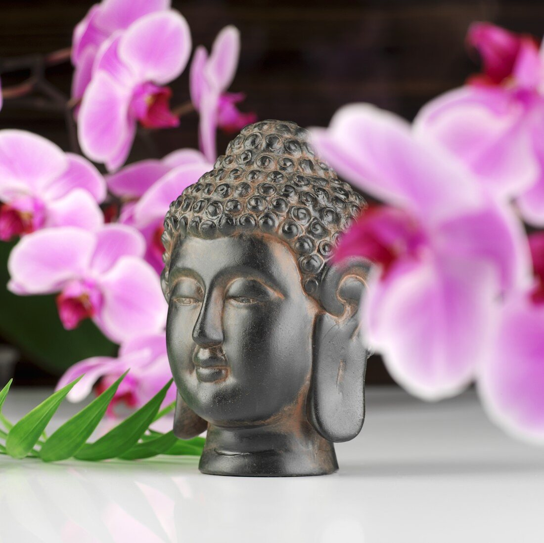 Buddha head in front of orchids