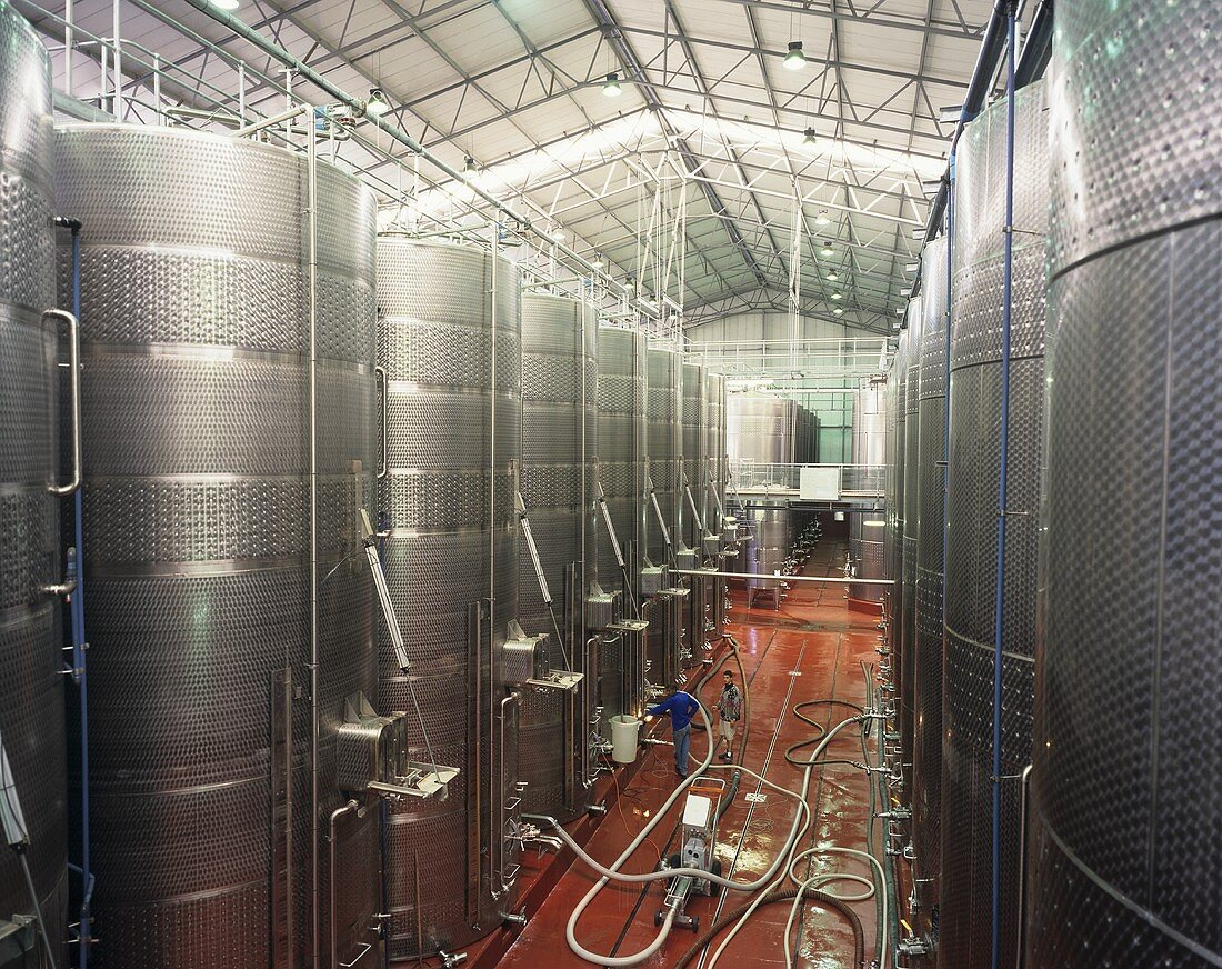 Stainless steel tanks for wine-making