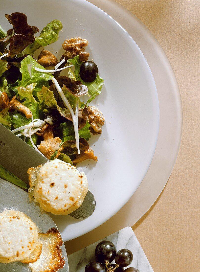 Oak Leaf Salad; Chanterelles & Goat Cheese
