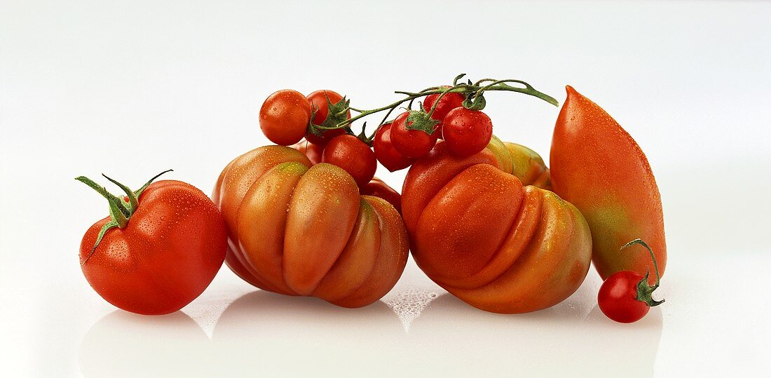 Several types of tomatoes