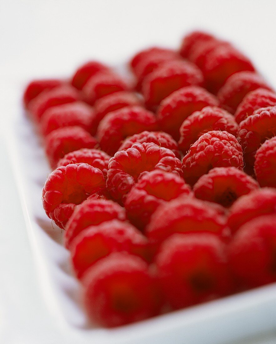 Raspberries lined up in a white bowl