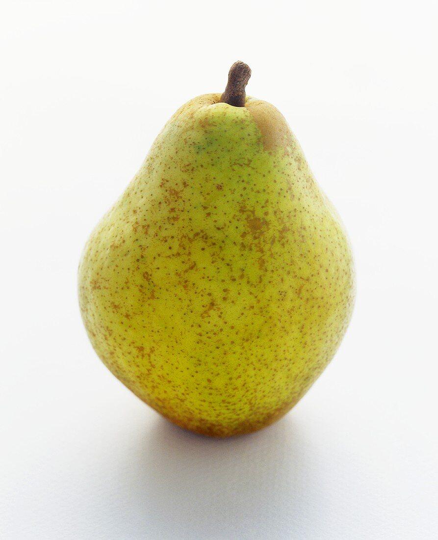 An Anjou Pear