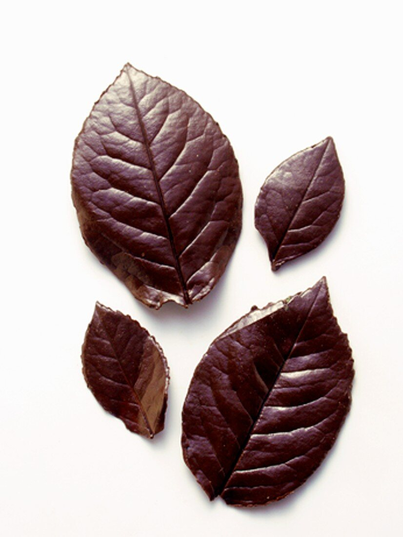 Chocolate Leaves: Two Large and Two Small