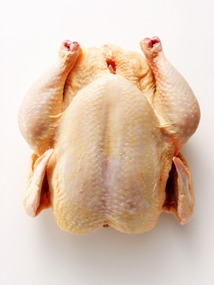 An Uncooked Chicken