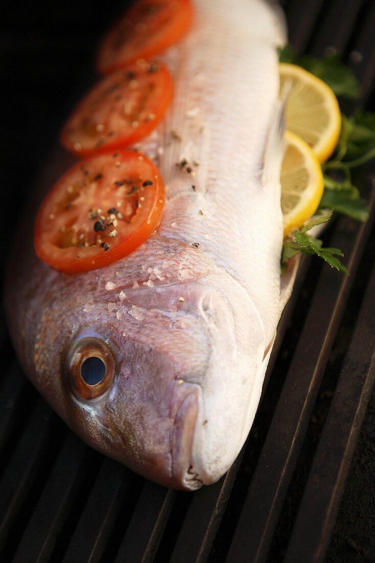 Bream with tomato and lemon slices on barbecue (raw)