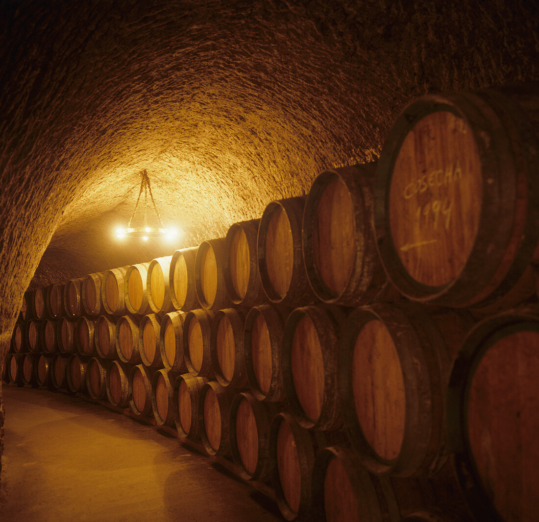 Barrel cellar, Isamel Arroyo, Ribera del Duero, Spain