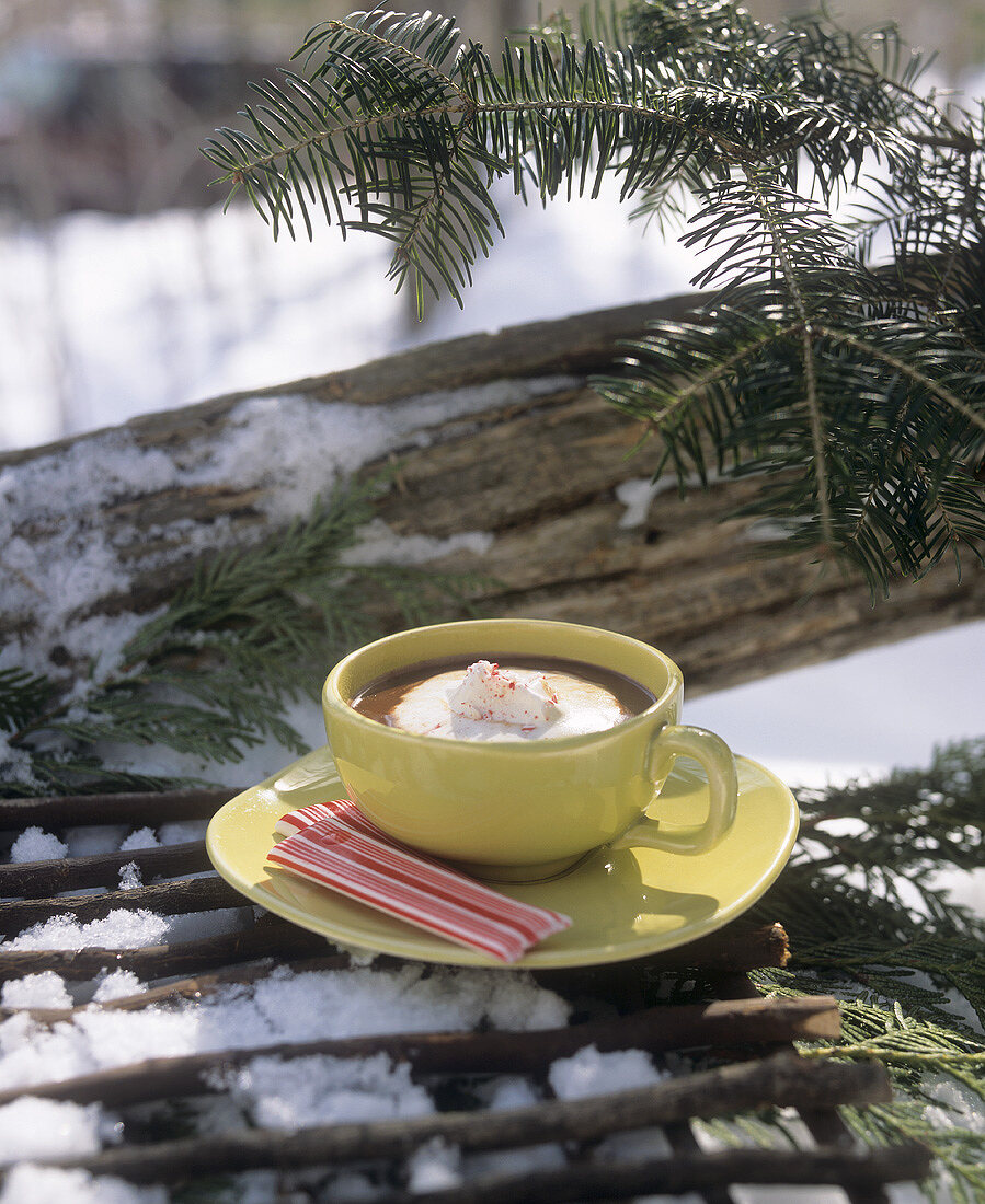 Hot chocolate with peppermint (USA)
