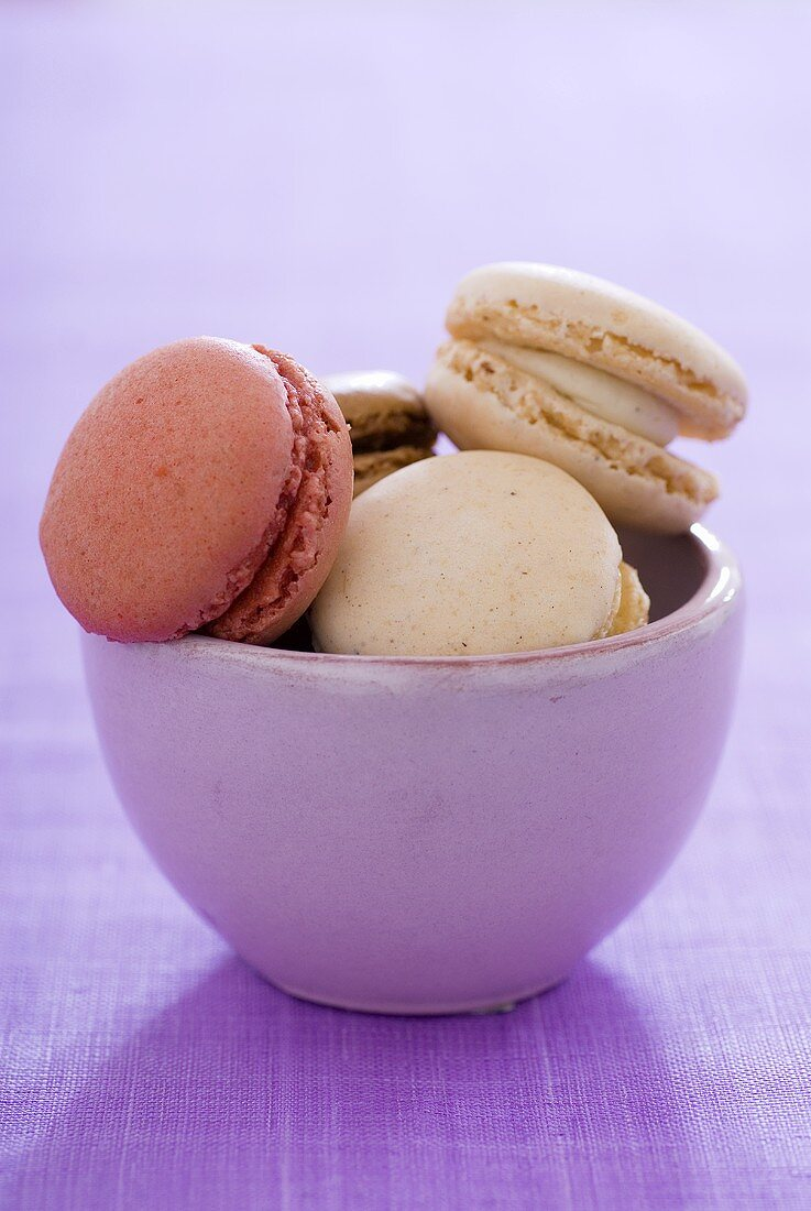Filled macarons in a bowl (small French cakes)