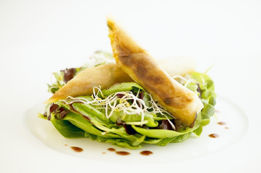 Vegetables fried in wonton wrapper on cress & spinach salad