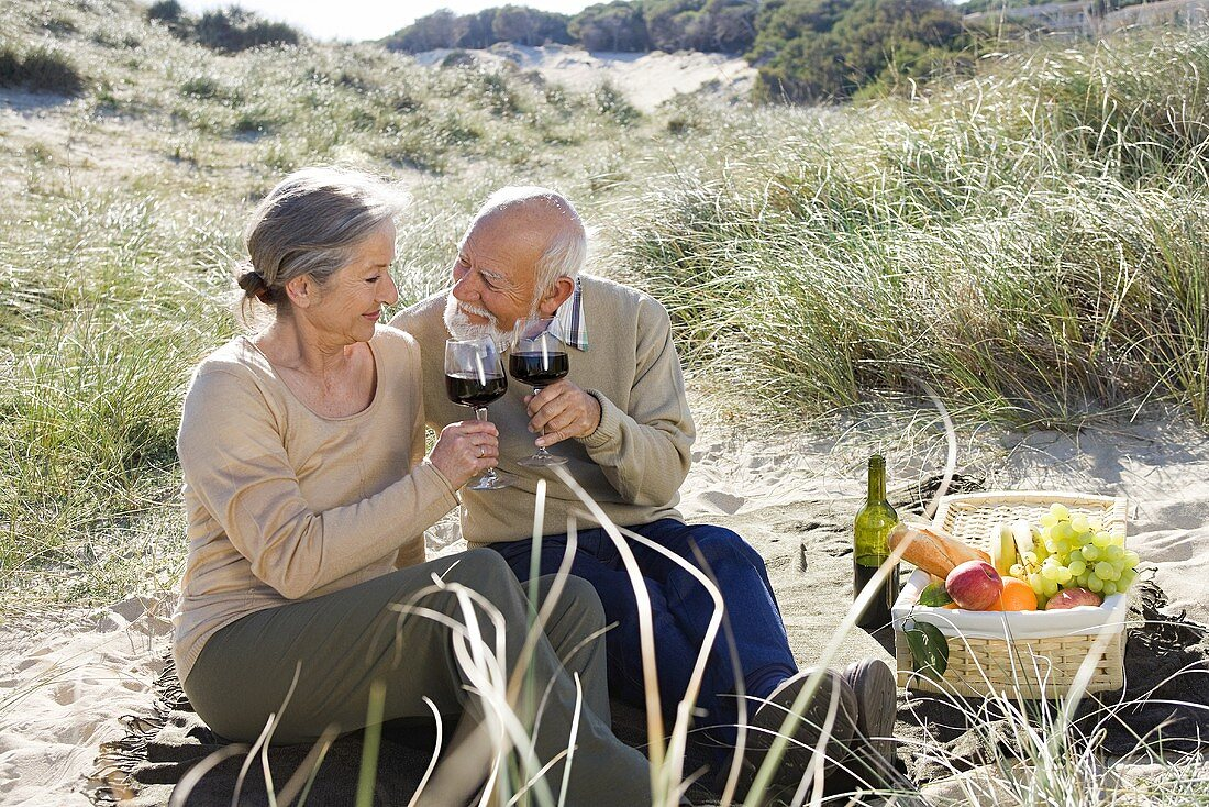 An older couple having a picnic