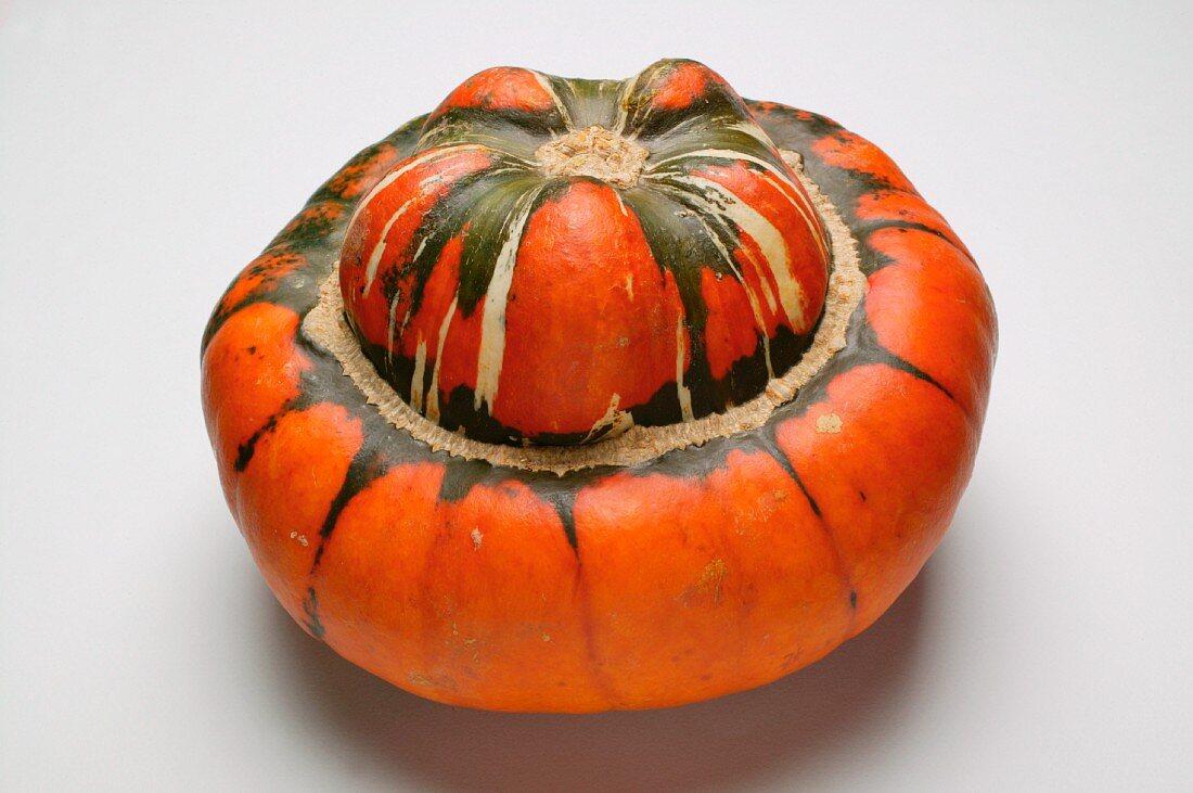 Turk's turban squash (Red Kuri)