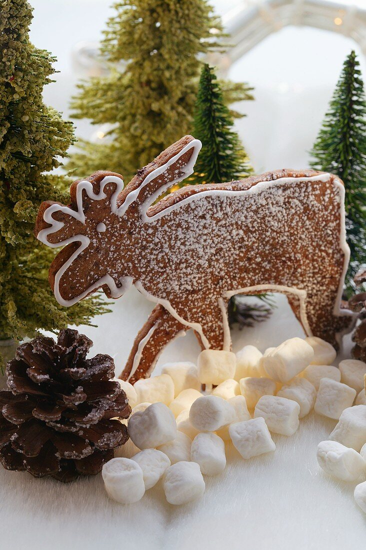 Chocolate elk biscuit in winter forest