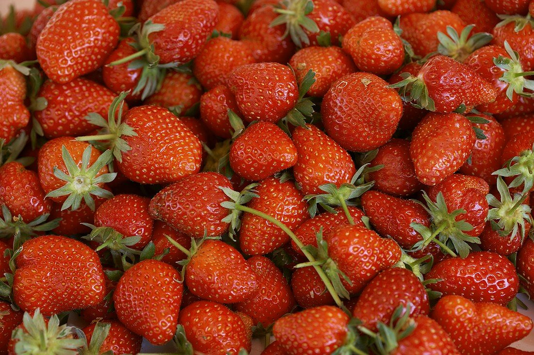 Fresh strawberries (filling the picture)