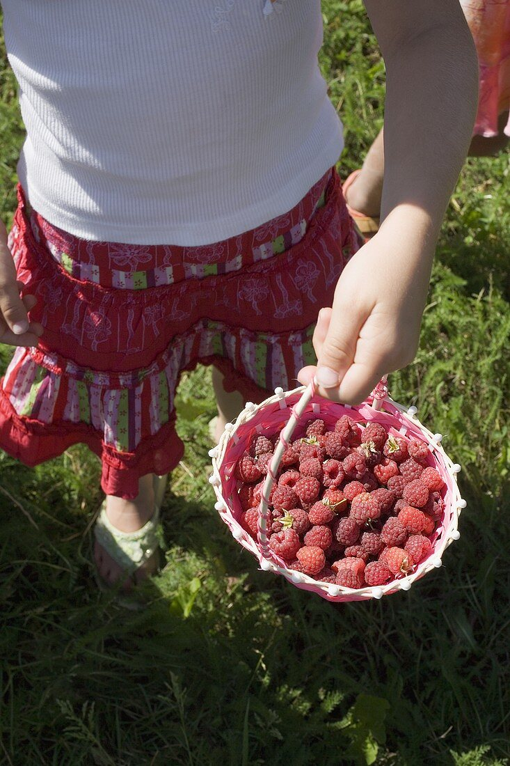 Girl holding small basket of freshly picked raspberries
