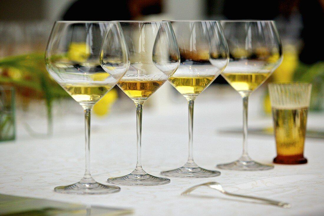 Wine glasses set up for degustation