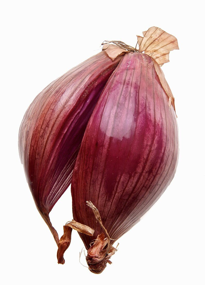 A red shallot