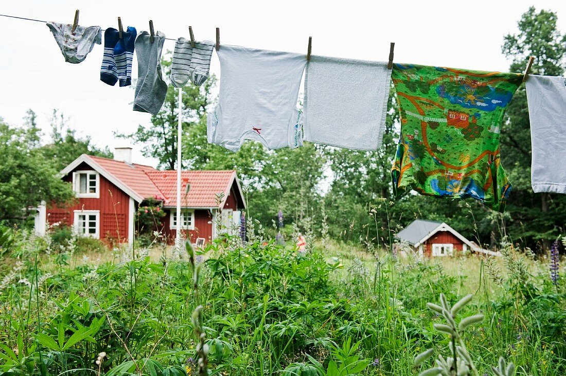 Washing lines in a garden with wooden houses in the background (Scandinavia)