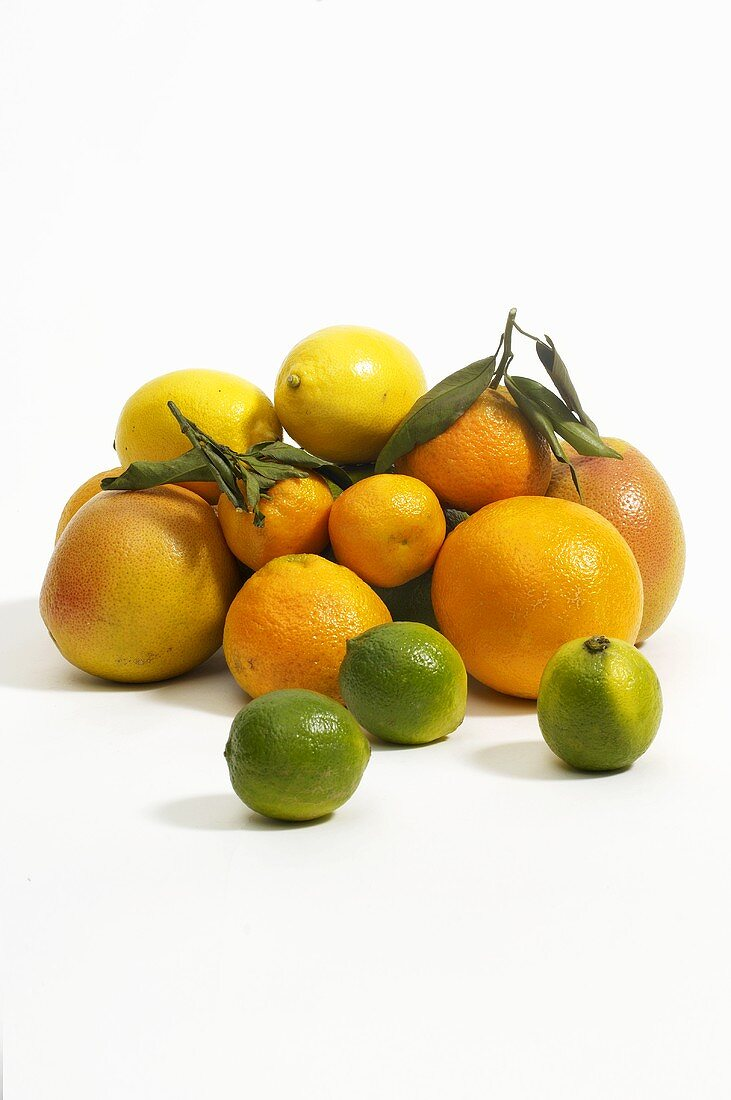 Various citrus fruits against a white background