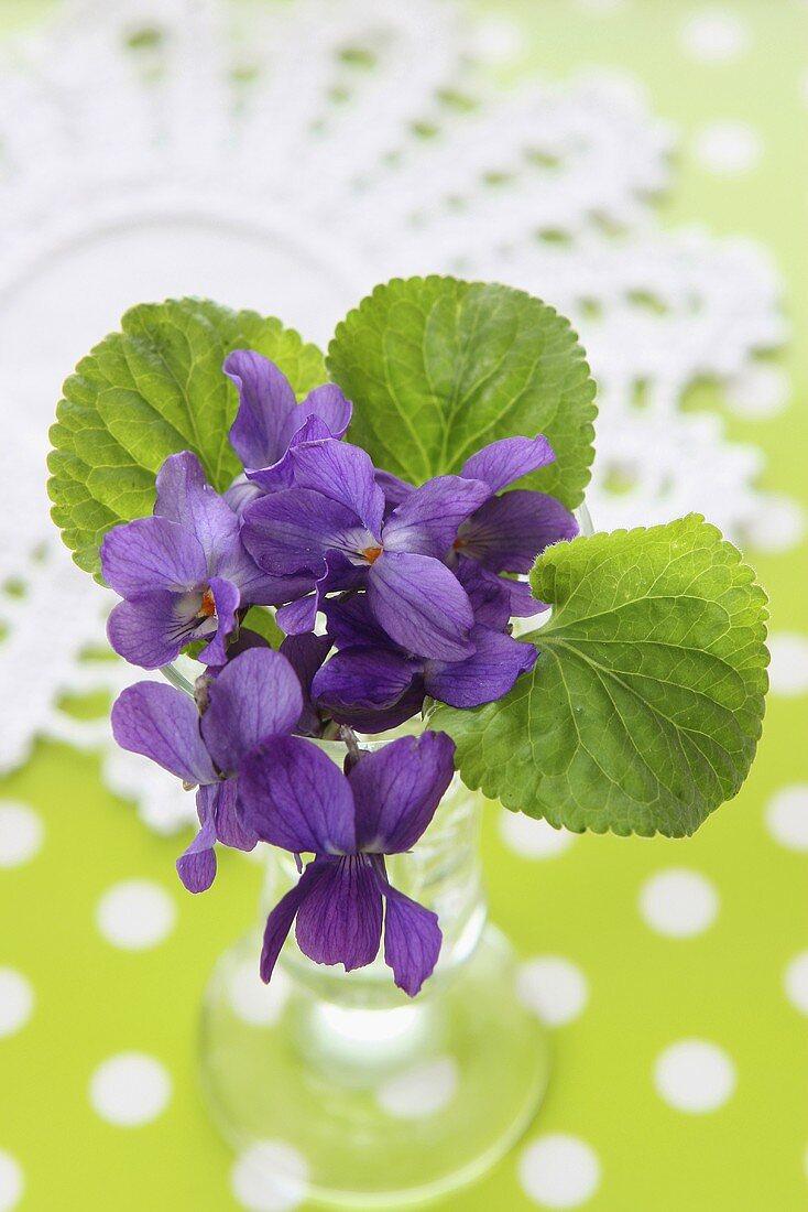 Posy of violets