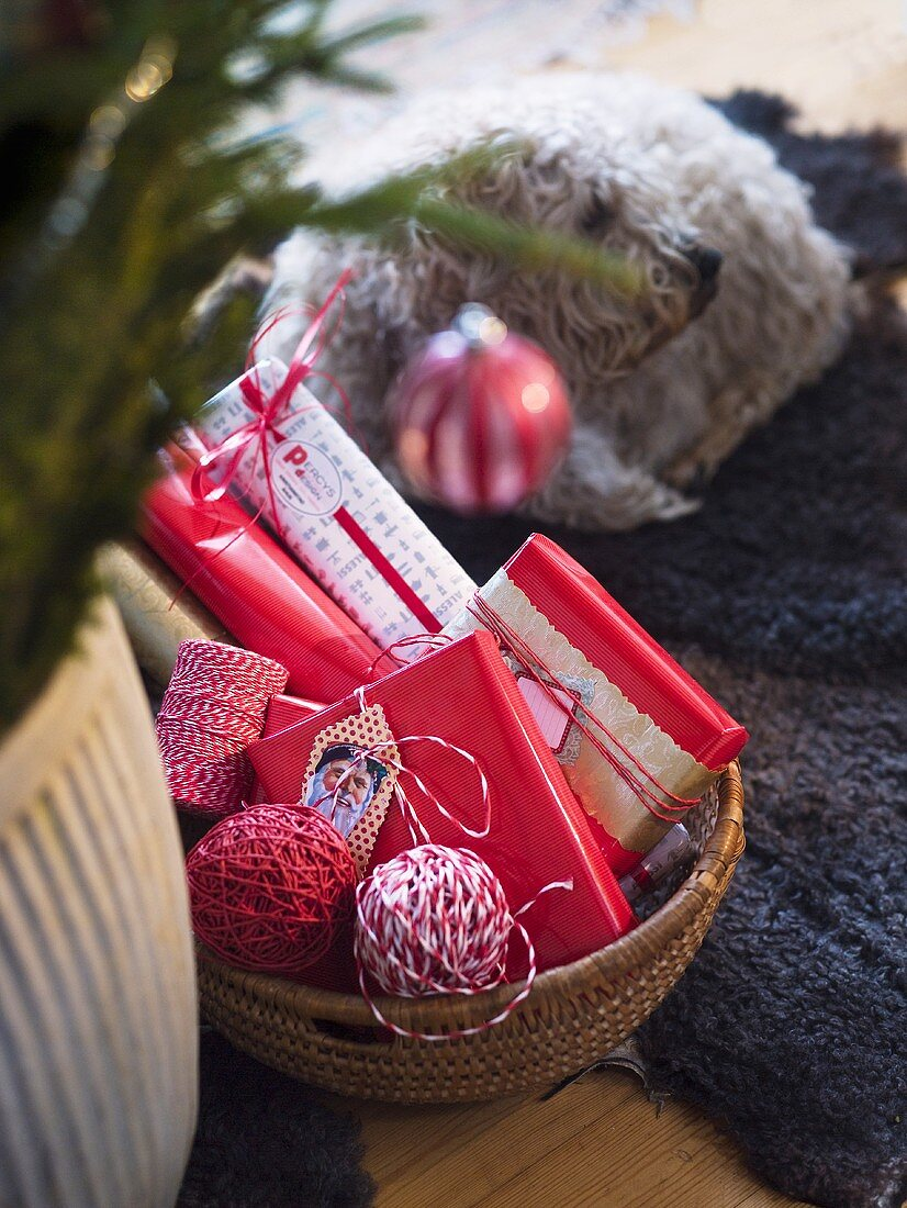 Christmas presents in a basket with a dog on a rug in the background