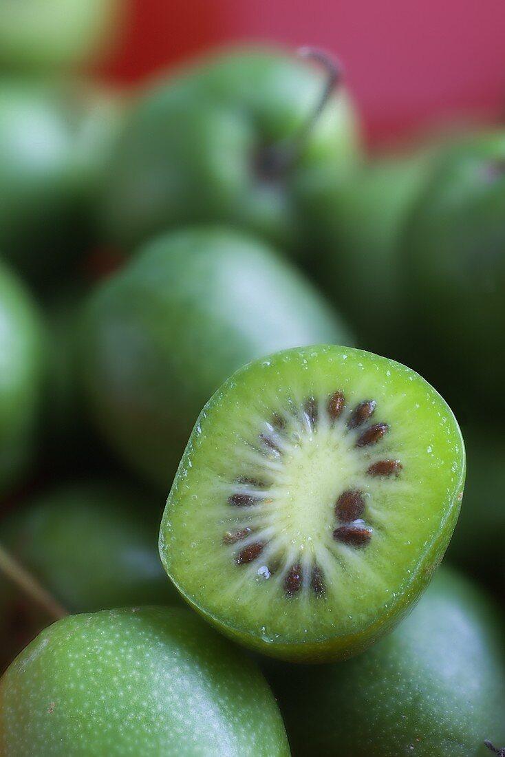 Mini kiwis (actinidia arguta)