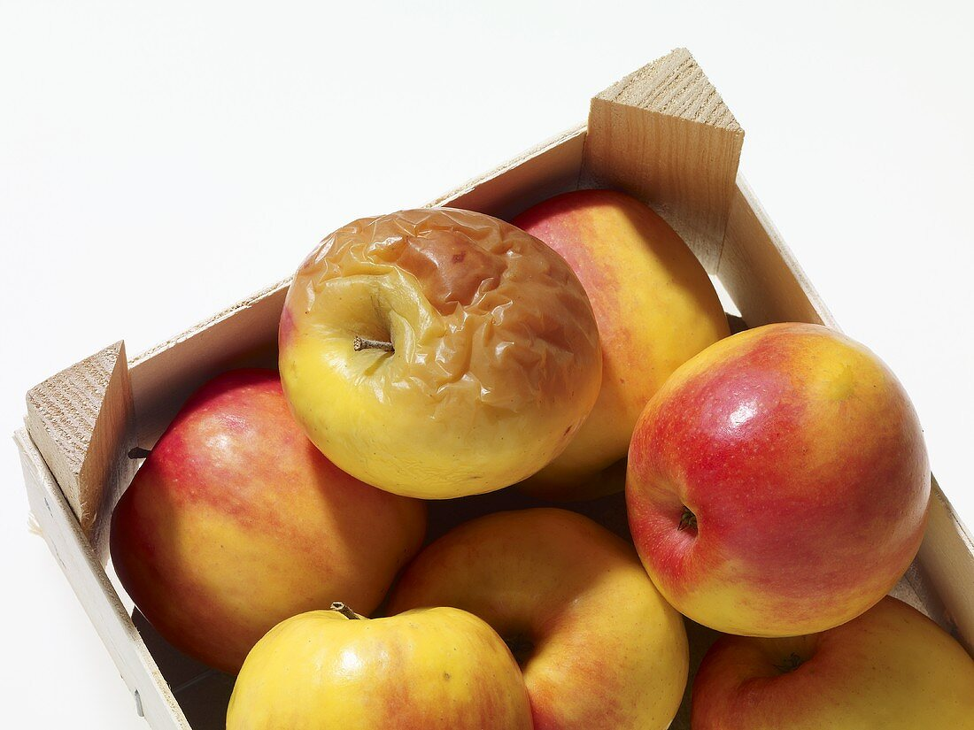 A mould apply in a crate of apples