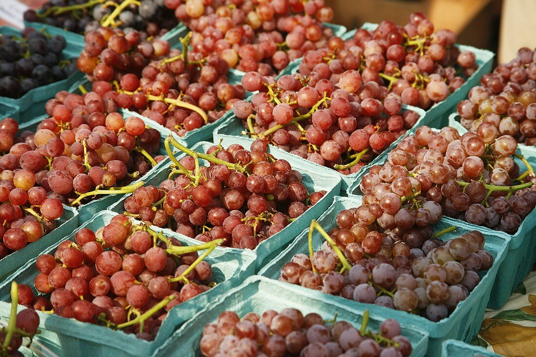 Organic Red Grapes at Farmer's Market