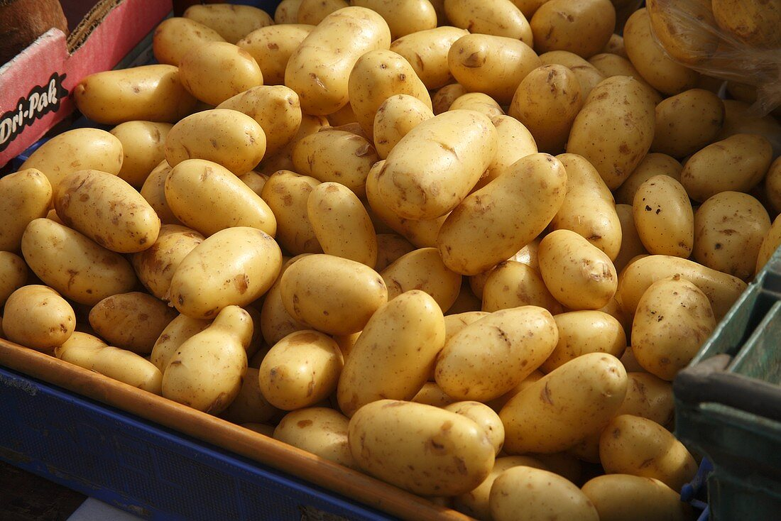 Organic Potatoes at Farmer's Market in Bantry, Ireland