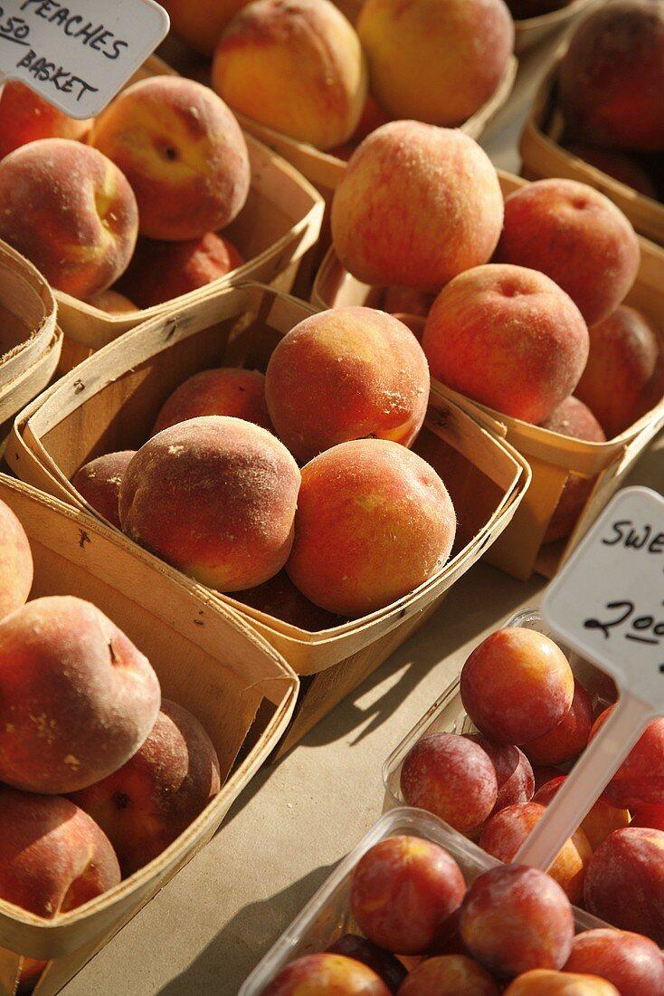 Organic Peaches in Baskets at Farmer's Market