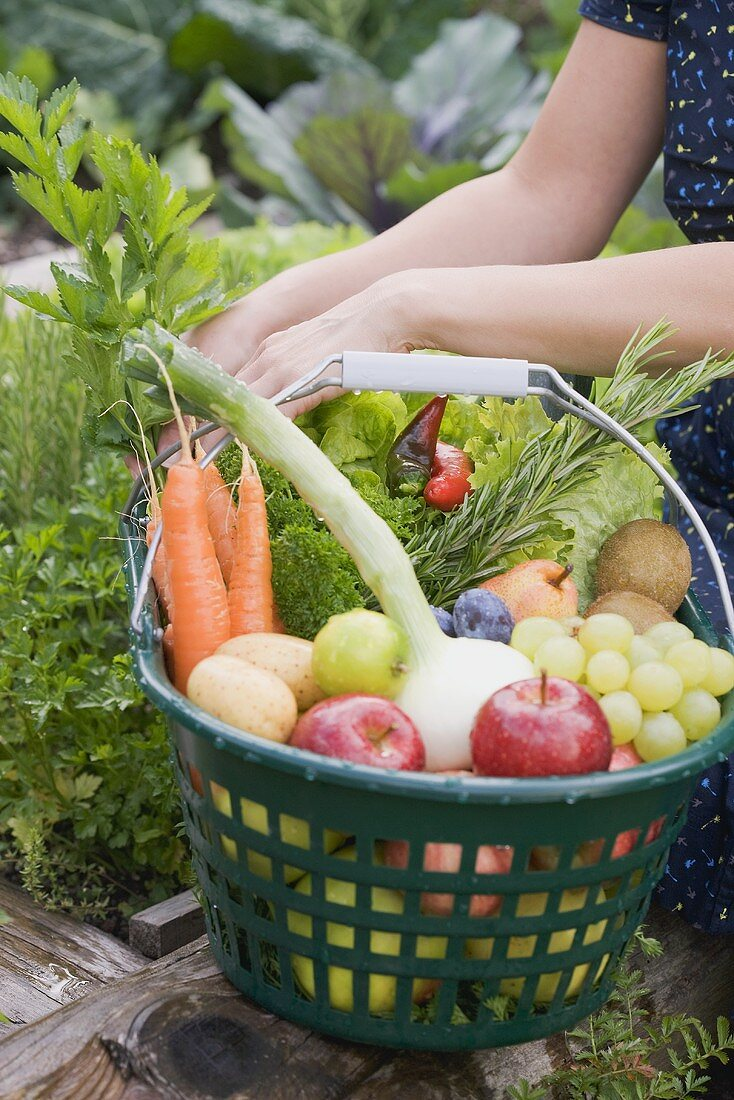 Fresh fruit and vegetables in a basket