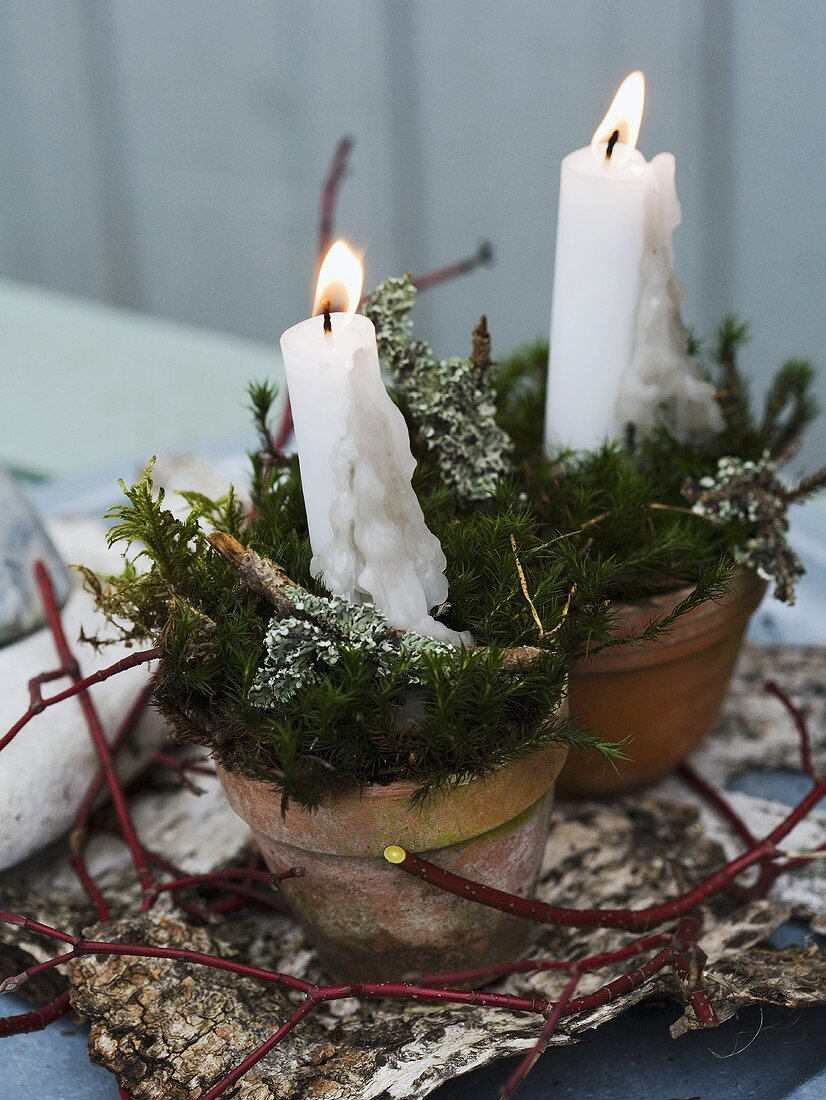Candles and moss in a flower pot