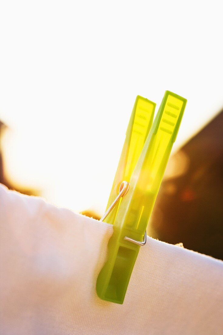 Clothes pin in the evening sun