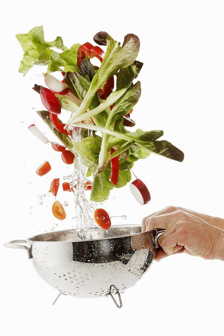Salad ingredients being washed