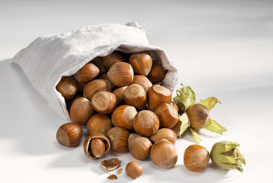 Upset sack of hazelnuts