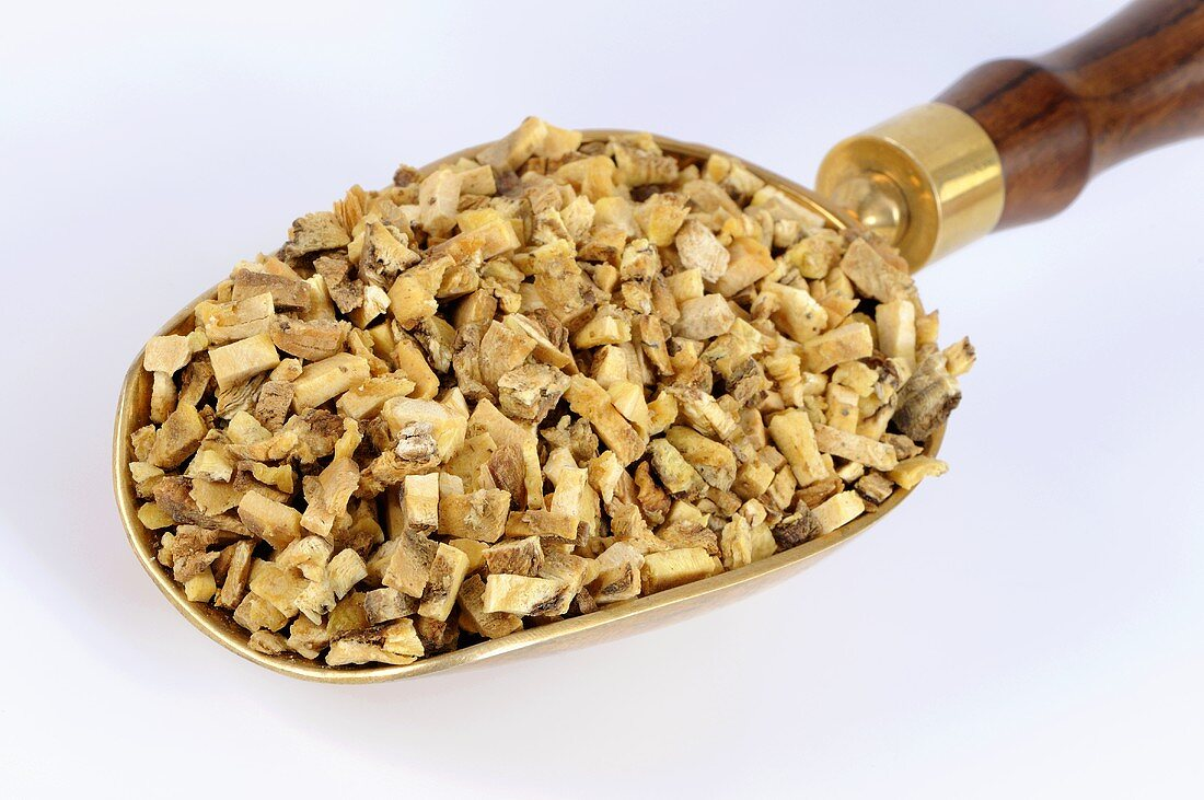 Dried angelica root in a scoop