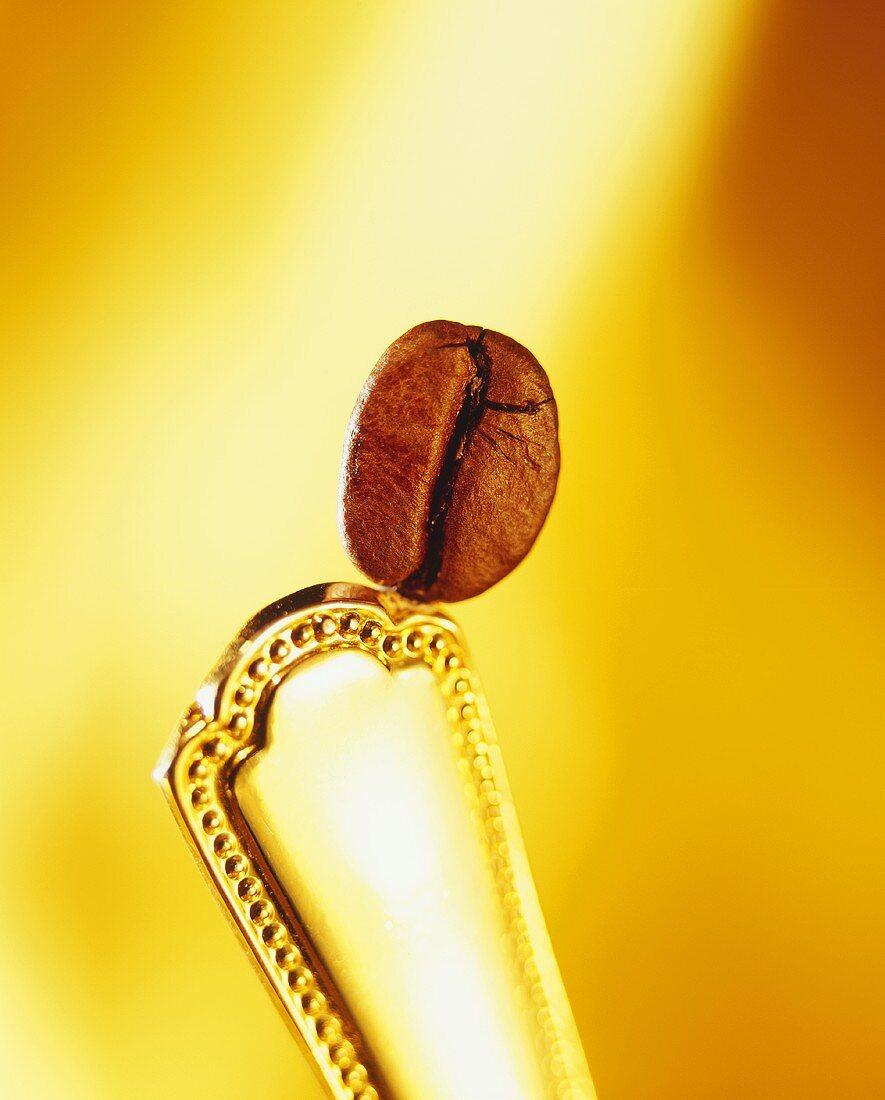 A coffee bean on a spoon handle