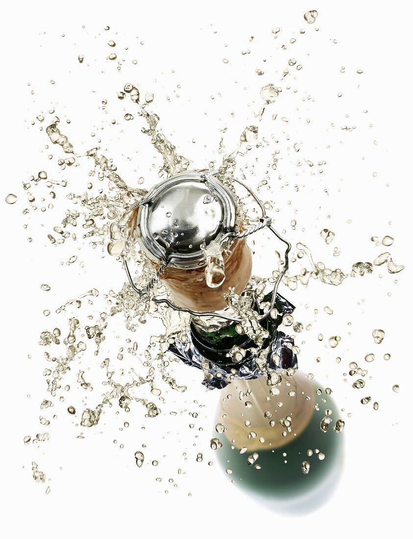 Korken fliegt aus der Sektflasche
