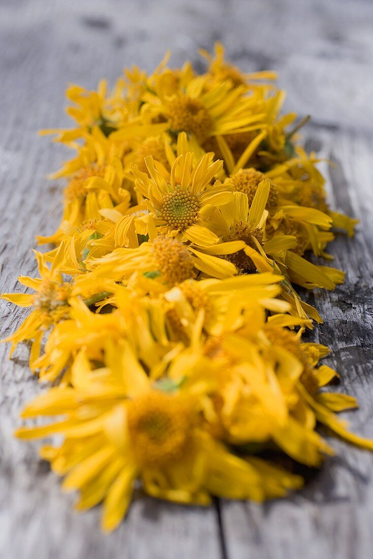Drying arnica flowers