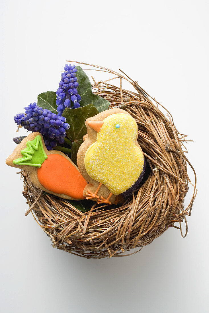 Easter biscuits (chick, carrot) & grape hyacinths in Easter nest