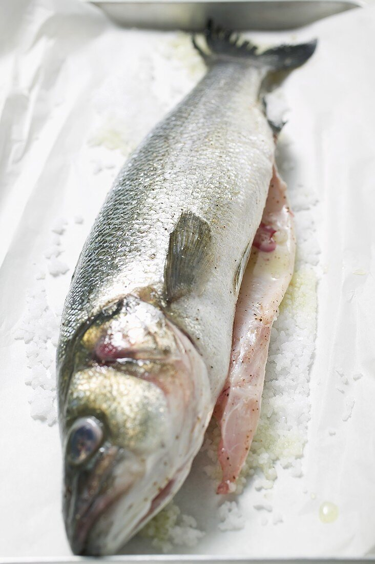 Fresh sea bass with salt on paper
