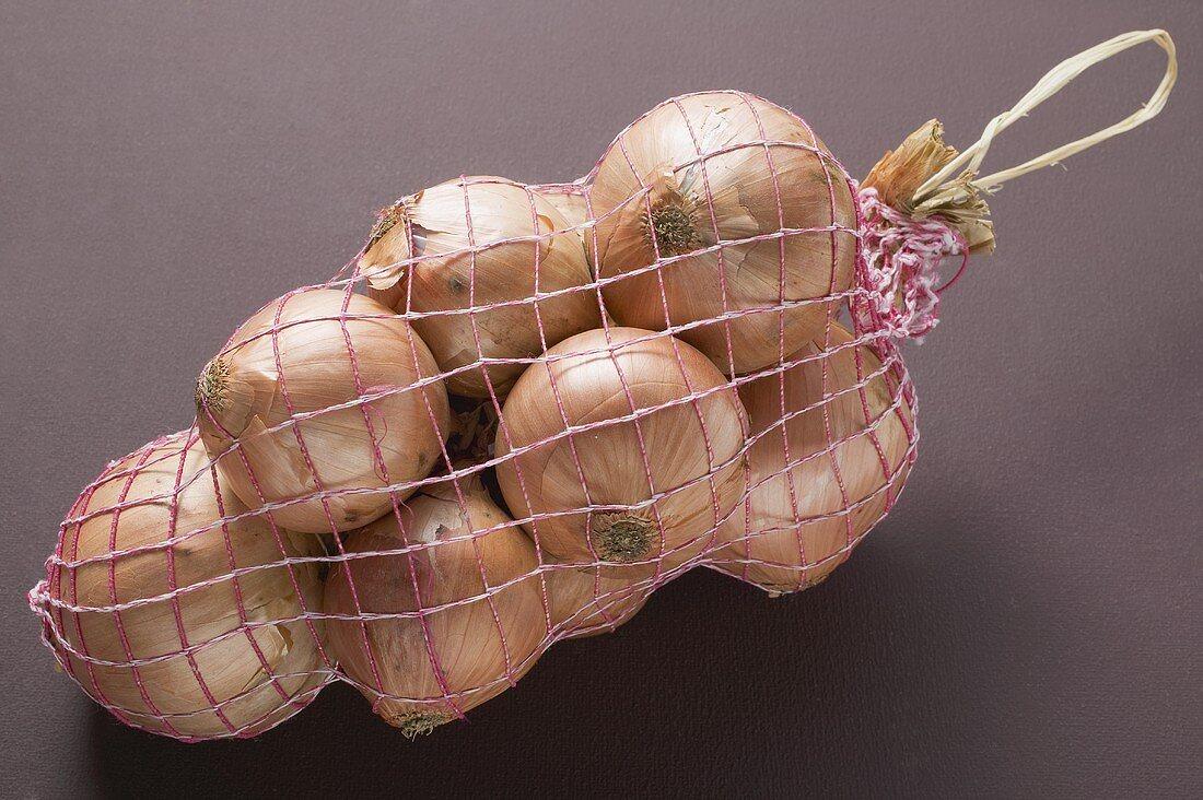 Brown onions in net